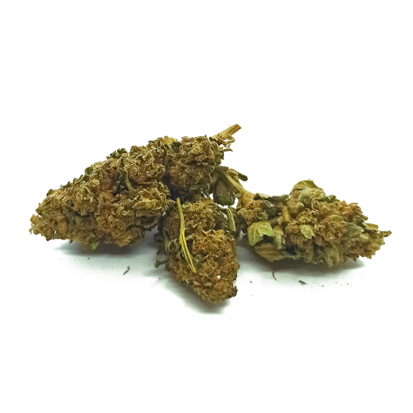pack-fleurs-cannatonic-indoor